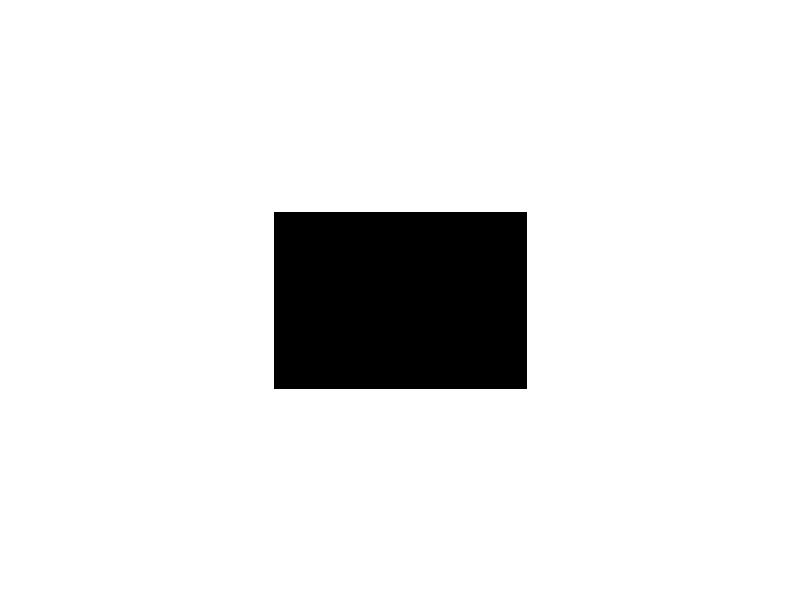 Bundestagsreden